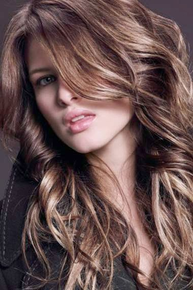 dark hair colors with highlights and lowlightsDark Brown Hair With ...