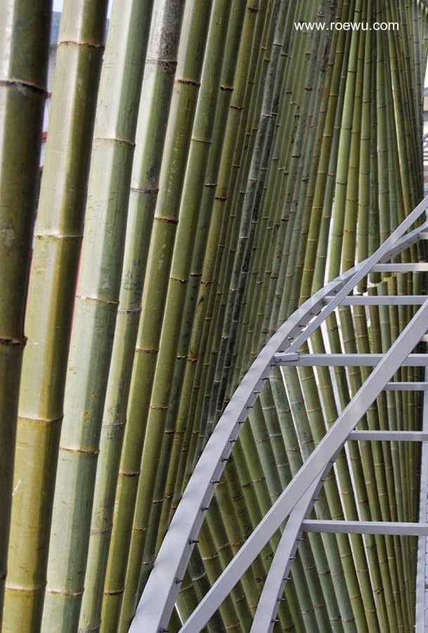 Detalle de la cortina de cañas de bambú