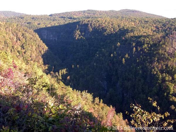 Overlook of Tallulah Gorge in Tallulah Falls, Georgia