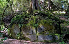Ancient Suppressed Stone Structure in New Zealand