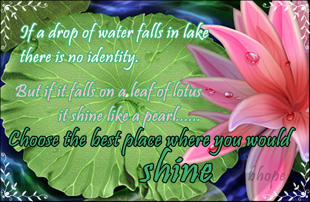 Lotus Flower Inspirational Quotes Quotes
