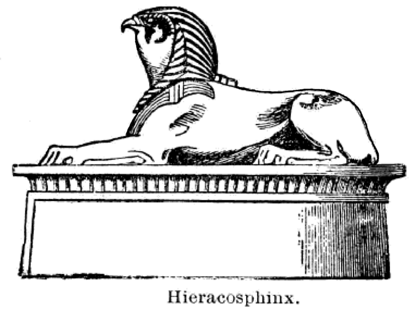 Egyptian Lion Drawing The Hieracosphinx—a
