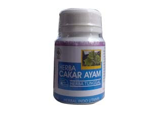 ramuan herbal penyakit gonore kencing nanah