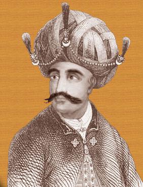 MARXIST: Kingdom of Mysore, Hyder Ali & Tipu Sultan