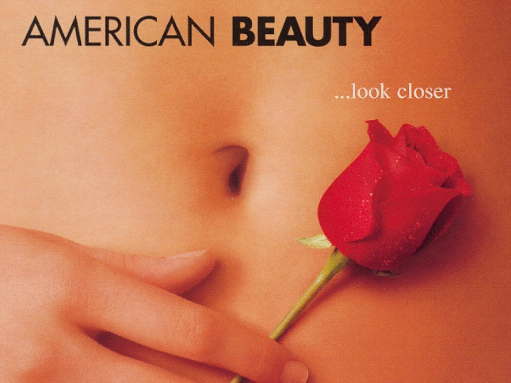 essays on american beauty