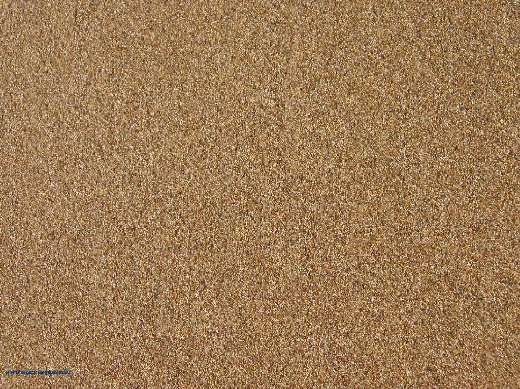 janelle mcintosh sand hd
