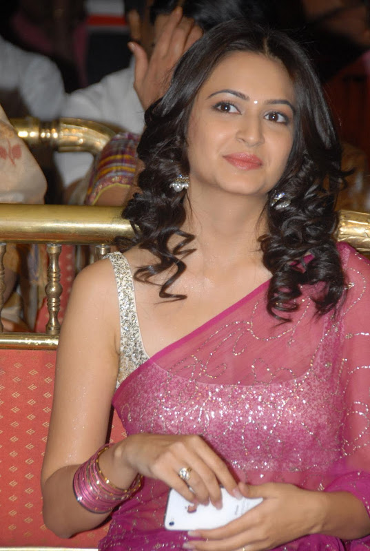 Pawan Kalyans Upcoming Actress Kriti Kharbanda In Hot Saree Stills Photos gallery pictures