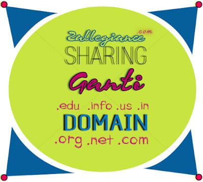 7 Langkah Penting Setelah Ganti Domain Blog