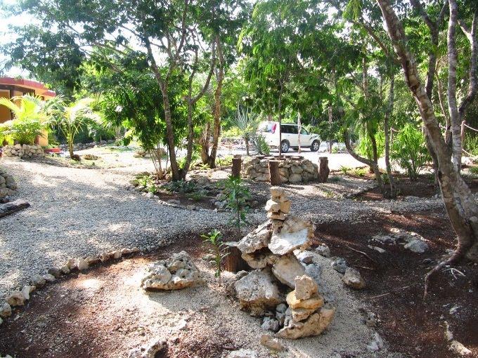diseño de jardines ecologicos para casas en Tulum y Playa del Carmen - vista desde el fondo