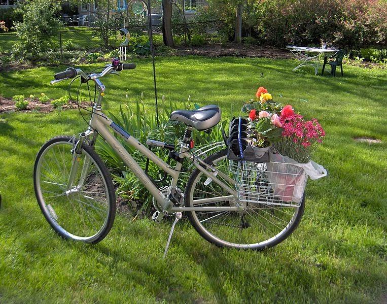 Cebada y Bicicleta: Clasificación general de las bicicletas y ...