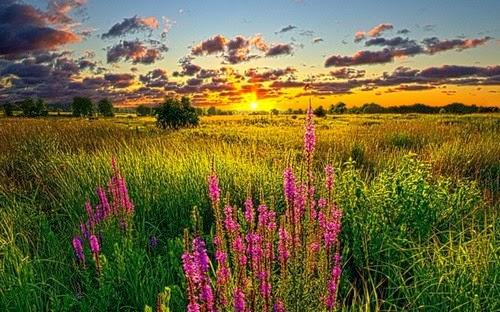 Sunset Colors wallpaper