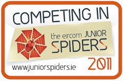 Junior Spider internet awards