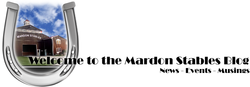 Mardon Stables News!