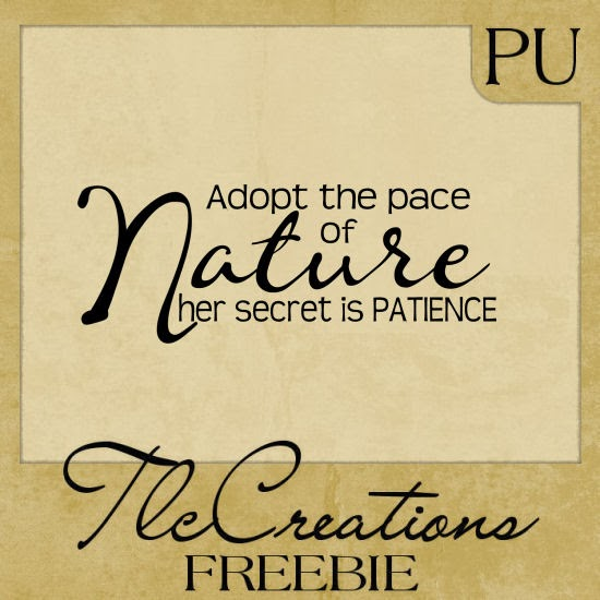 http://4.bp.blogspot.com/-YoFs4-b9ktI/Uu3O1ikQV5I/AAAAAAAAzcs/s_PPARQxO_8/s1600/NaturePatiencePrev.jpg