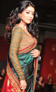 Shriya Saran Hairstyle Photo Gallery
