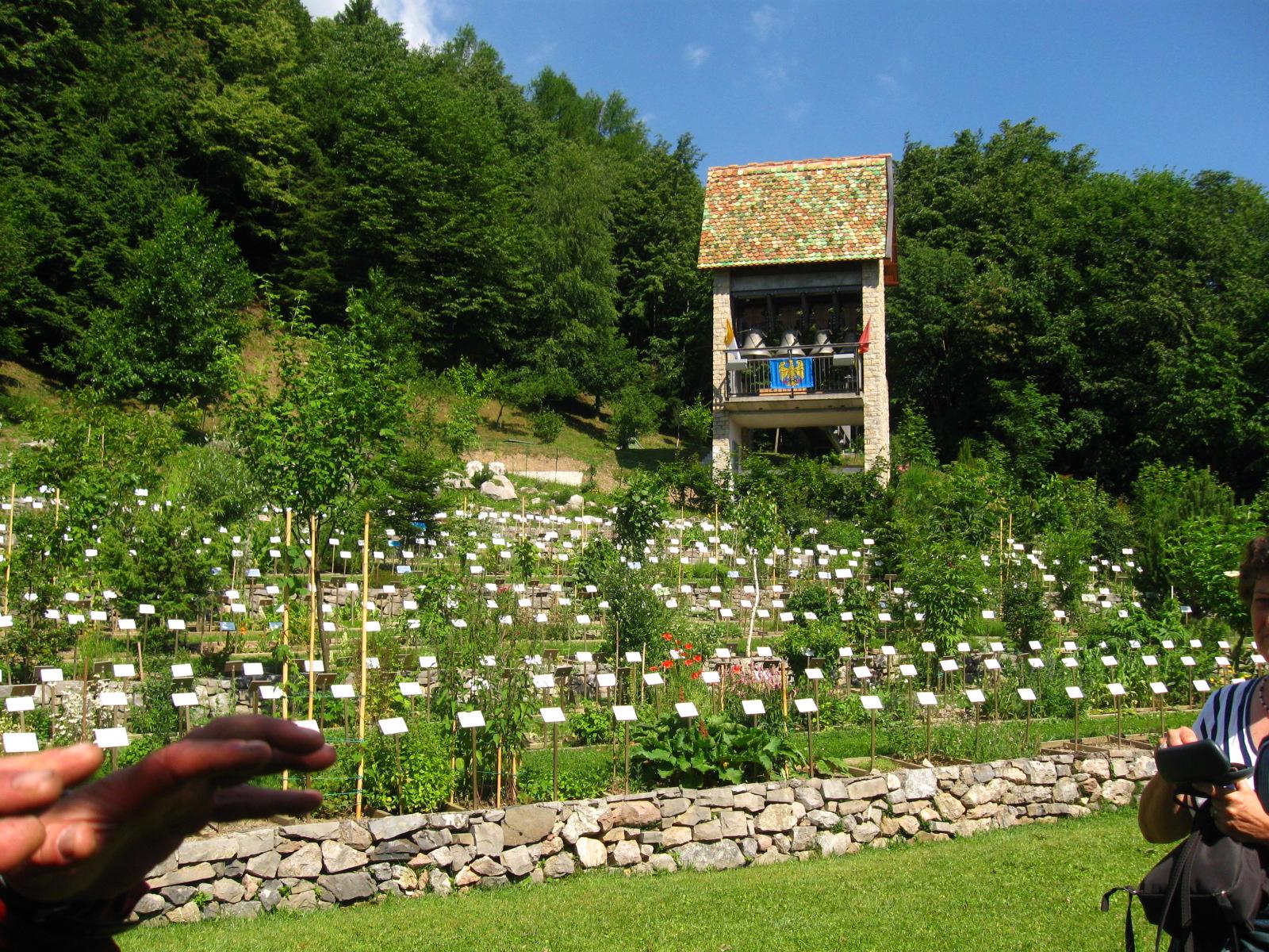 Centro ricerca piante officinali veneto giardini da - Il giardino dei semplici ...