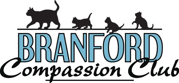 Branford Compassion Club Blog