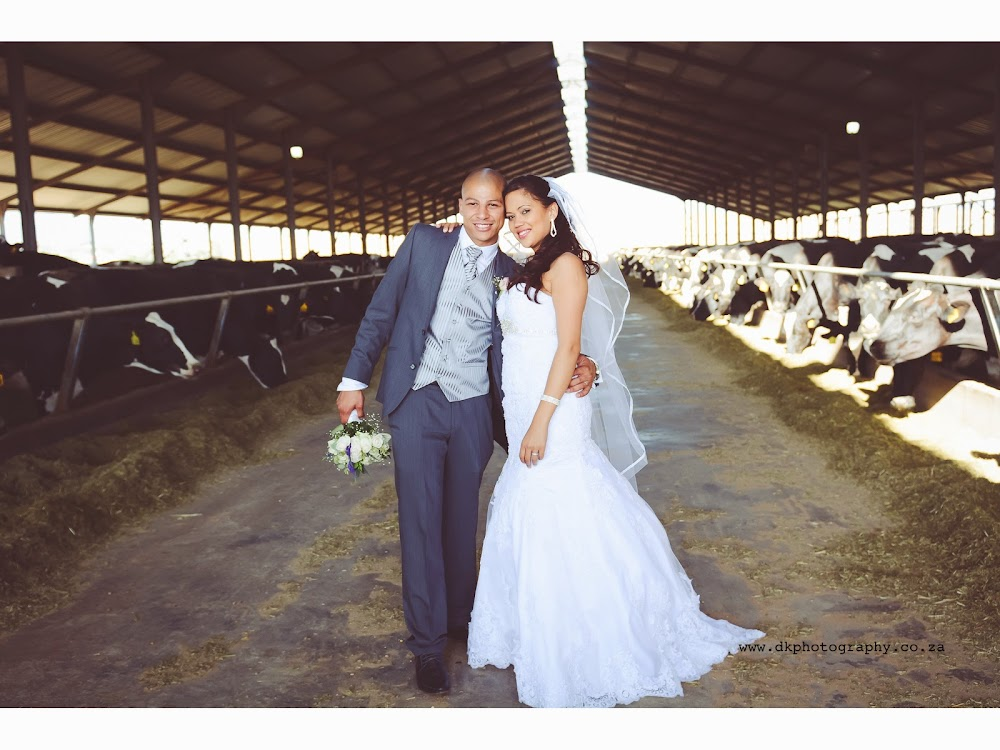 DK Photography Slideshow-398 Bianca & Ryan's Wedding in Eensgezind Function Venue  Cape Town Wedding photographer