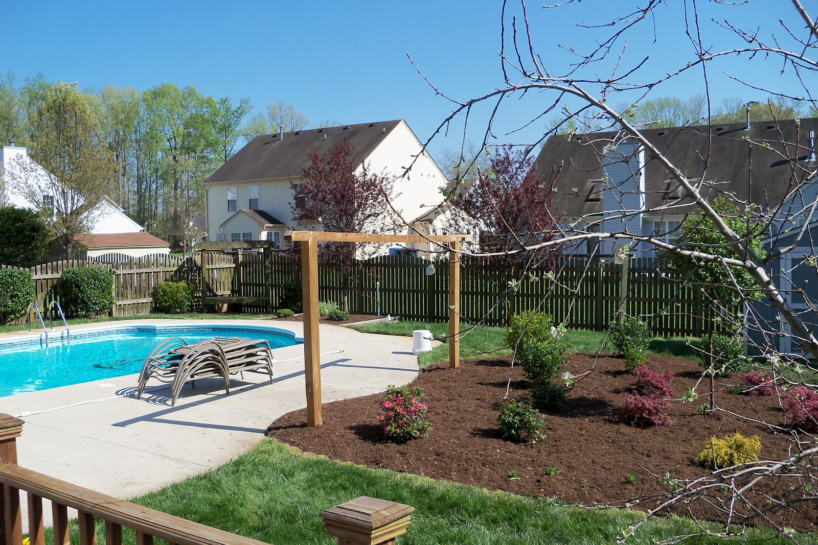 Dr dan 39 s garden tips enhancing your landscape with for Pool design virginia