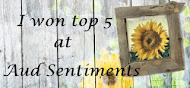 TOP 5 OVER AT AUD SENTIMENTS