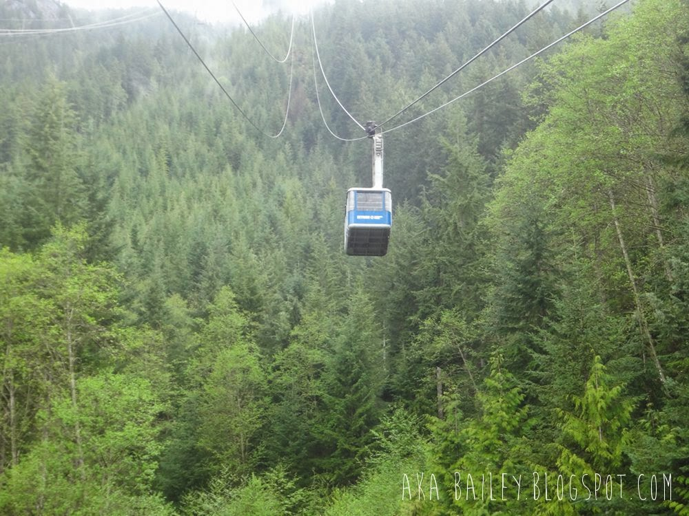 Grouse Mountain, Skyride Gondola