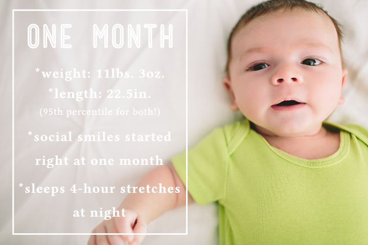 one month newborn photos