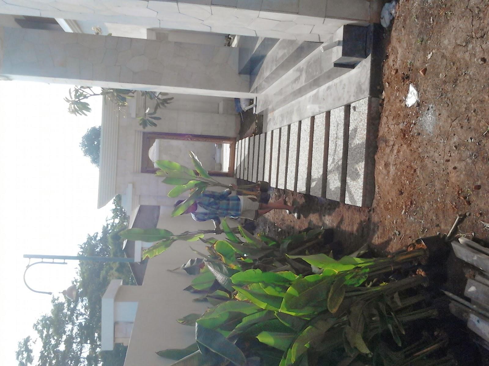 renovasi taman rumah