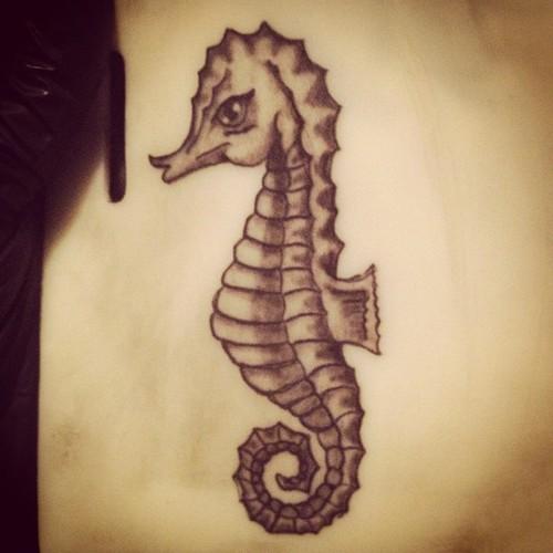 Seahorse Back Tattoos