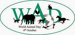 روز جهانی حیوانات گرامی باد