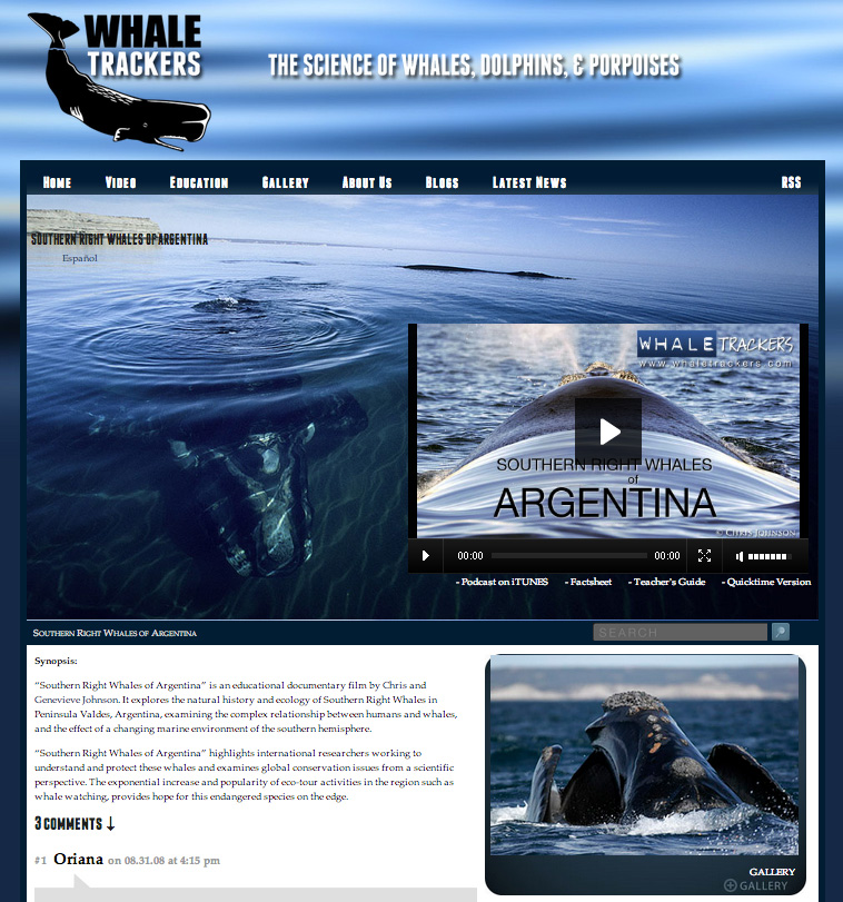 Southern Right Whales of Argentina - A earthOCEAN production