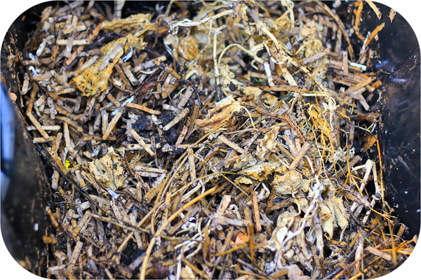 shredded paper compost Compost - organic matter that has been decomposed and recycled as a fertilizer and soil amendment do you have a garden and want an easy way to make fertilizer wondering what to do with all those table scraps, leaves, and grass clippings.