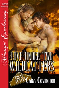 https://www.goodreads.com/book/show/9835649-love-under-two-wildcatters