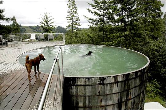 Wonderland ca it 39 s hot people - Convert swimming pool to rainwater tank ...