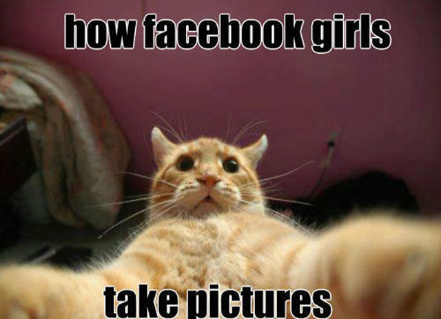 Funny Pictures Photos Images and Pics for Facebook