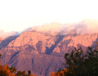 Veiw from my backyard of the Sandia Mountains at sunset.
