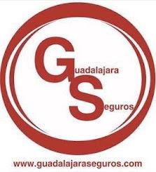 GUADALAJARA SEGUROS