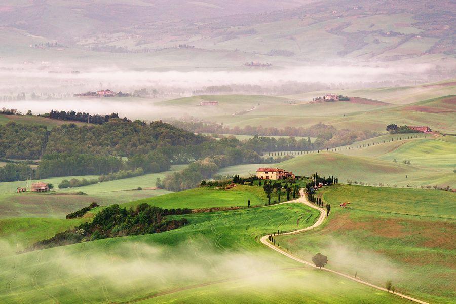 28. Morning fog by Dennis F