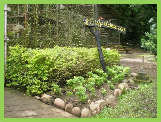 Activa tu mente jard n bot nico de la unet for Talleres jardin botanico