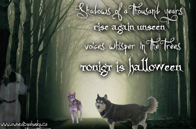 Halloween quote and graphic