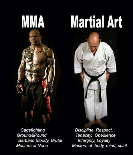 STRENGTH FIGHTER™: MMA vs. Martial Arts