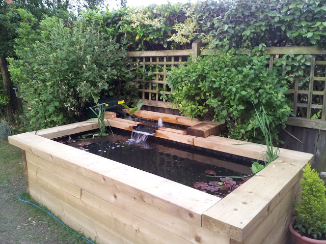 The diligent gardener water features for Wooden koi pond construction