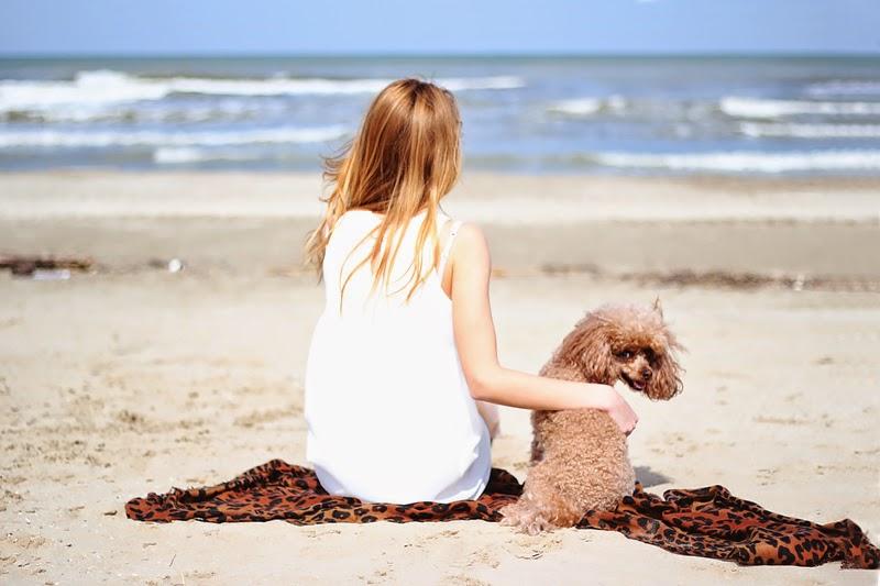 little white dress, leopard scarf, beach look