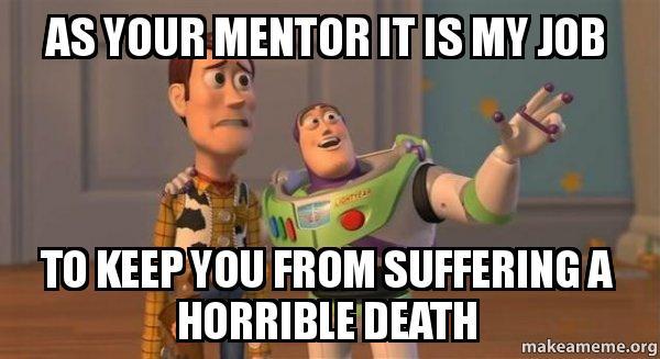 Mentorship Meme