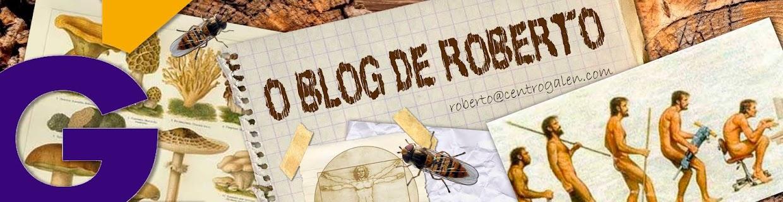 O blog de Roberto