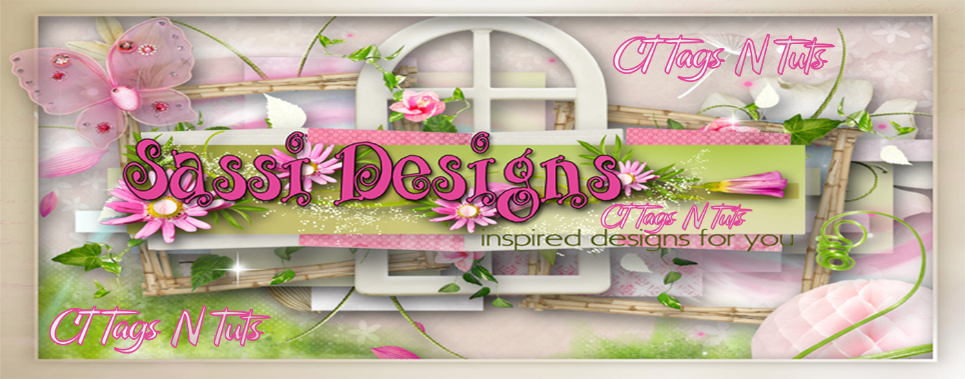 Sassi Designs CT Tags N Tuts