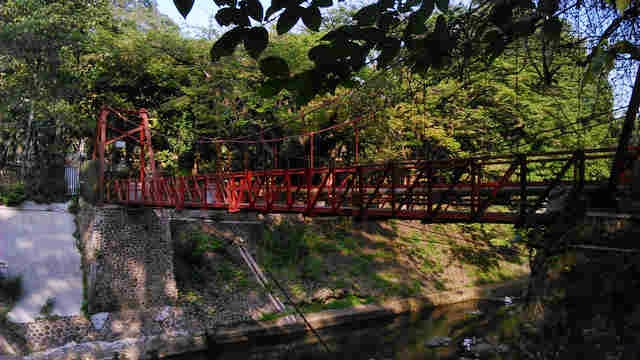 Jembatan Pemutus Cinta Kebun Raya Bogor