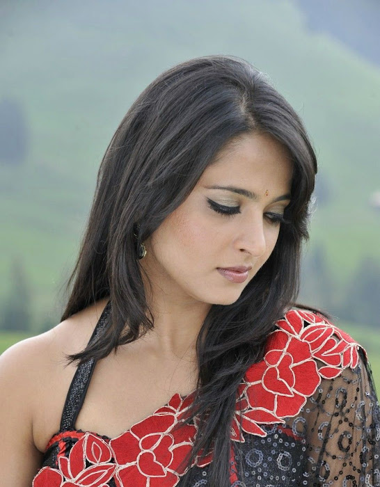 anushka in saree hot images