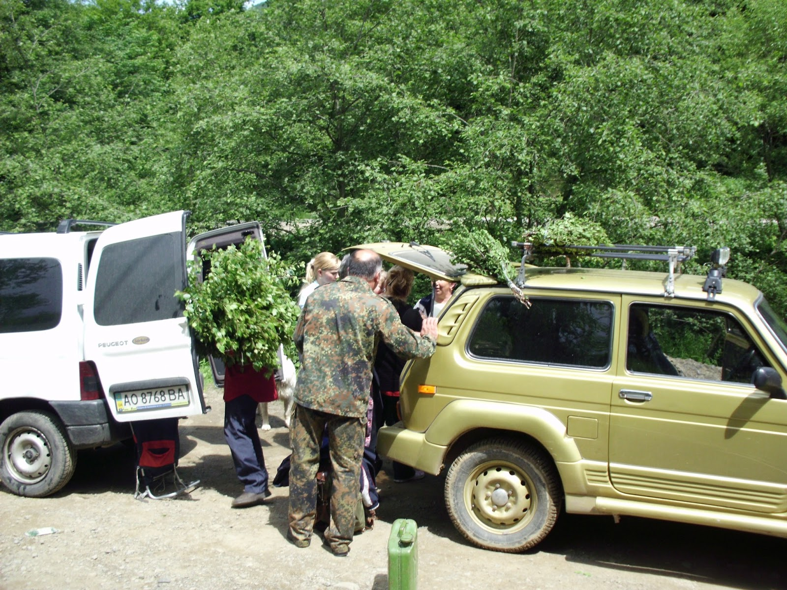 Driving schools in Transcarpathia: a selection of articles