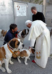 The Holy Father with St Bernards