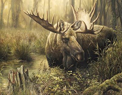 pinturas--de-animales-salvajes
